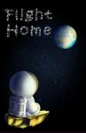 Flight Home Multiplayer screenshot 1/4