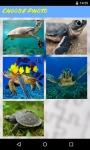 Turtle Jigsaw Puzzle FREE screenshot 2/5