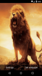 Beautiful Lion Live Wallpaper HD screenshot 4/6