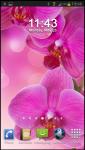 Flower Wallpaper HD v1 screenshot 6/6