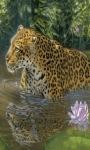 Tiger Bath Live Wallpaper screenshot 1/3