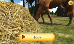 My Horse World 3D screenshot 2/6