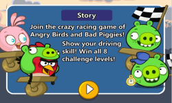 ANGRY BIRDS CRAZY RACING screenshot 1/4