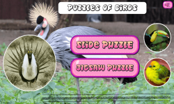 Puzzles of Birds Free screenshot 1/6