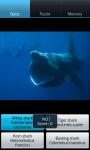 Sharks : Ocean Wild Animals screenshot 6/6