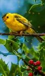 Lonely Yellow Bird Live Wallpaper screenshot 1/3