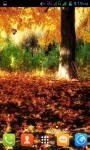Autumn Live Wallpaper Best screenshot 2/5