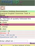 Class 9 - Noun screenshot 3/3