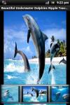 Dolphin Touch Live Wallpaper screenshot 1/4