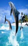 Dolphin Touch Live Wallpaper screenshot 2/4