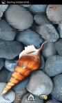 Shell in Water LWP screenshot 1/3