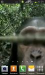 Monkey found your phone screenshot 1/5