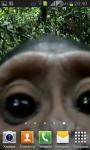 Monkey found your phone screenshot 4/5