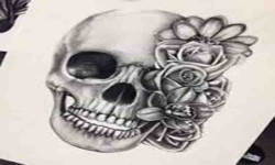Skull wallpapers pics screenshot 3/4