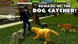 Stray Dog Simulator maximum screenshot 3/6