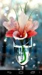 Flower Wallpapers by Nisavac Wallpapers screenshot 5/6