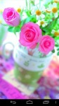 Flower Wallpapers by Nisavac Wallpapers screenshot 6/6