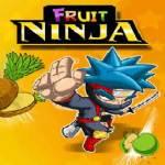 Fruit Ninja Pro screenshot 1/4
