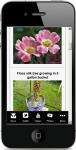 Garden Ideas screenshot 4/4