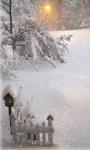 Light In Snow Live Wallpaper screenshot 2/3