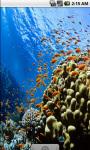 Cool Underwater Scenery Live Wallpaper screenshot 2/4