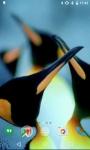 Penguins HD Video Live Wallpaper screenshot 2/4