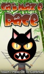 Cat Maze Race Free screenshot 1/1