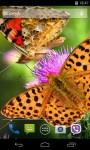 Butterfly Live Wallpaper Wave Effect screenshot 2/4