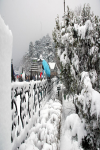 Shimla City screenshot 2/4