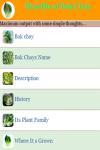 Benefits of Bok Choy screenshot 2/3