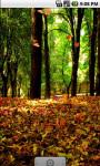 Forest Fall Live Wallpaper screenshot 1/4