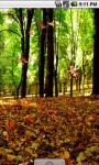 Forest Fall Live Wallpaper screenshot 3/4