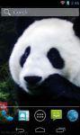 Cute Panda Wallpaper screenshot 2/3