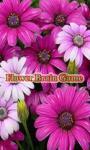 Flowers Brain Game screenshot 1/3