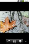 Rain LWP  screenshot 1/5