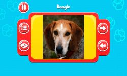 Dog Breeds Great Quiz screenshot 2/6