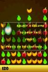 Fruit Hunt Lite screenshot 5/5