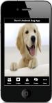 Dog Pictures screenshot 1/4