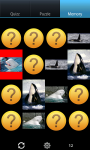 Whales : Ocean Wild Animals screenshot 4/6