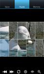 Whales : Ocean Wild Animals screenshot 5/6