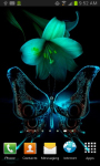 Animated Butterfly Live Wallpaper screenshot 1/1