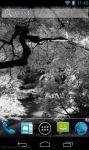 Black and White HD Wallpaper screenshot 1/2