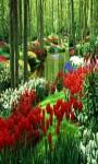 Garden Live Wallpaper Frames screenshot 3/6
