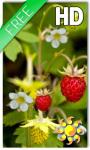 Forest Berry Live Wallpaper screenshot 1/2