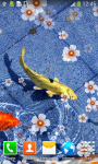 Koi Fish Live Wallpapers Free screenshot 4/6