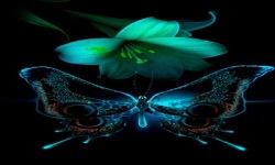 Lilly Butterfly Live Wallpaper screenshot 2/3