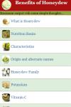 Benefits of Honeydew screenshot 2/3
