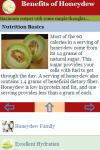 Benefits of Honeydew screenshot 3/3