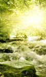 Forest Stream Live Wallpaper 2 screenshot 1/3