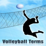 Volleyball Terms Lite screenshot 1/2